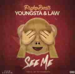 PsykoBeats - See Me Ft. Youngsta & Law